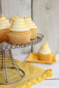 Honey Cupcakes!
